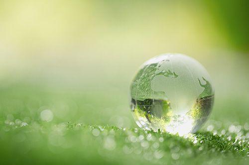 Environmental Sustainibility